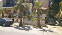 1200 sqm  Villa for sale in Amman
