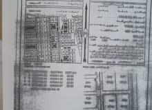 ثلاث اراضي شبك في البريمي وصحار 2