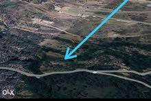 ارض في منطقة الرمليه قضاء عاليه صالحه للبناء