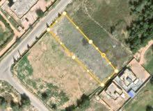 قطعة ارض للبيع 2000متر مربع (ملك مقدس)