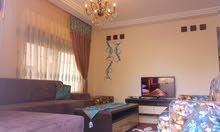 شقة فاخرة 2 نوم - طابق ارضي مدخل منفصل من المالك مباشرة