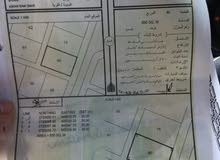 ارض للبيع شناص اسرار بن عمر