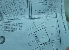 فرصو ذهبية ... أرض سكنية في المضيبي ( الأفلاج ) 1000 متر بسعر 3 الاف ريال