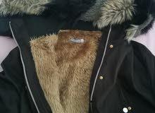 معطف جميل