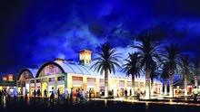 جزيرة ديرة السوق الليلي