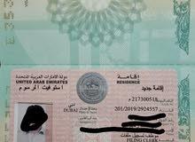 freelance visa
