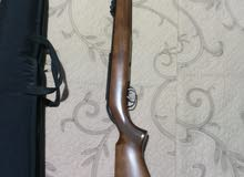 air gamo Stutzen rifle