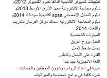 محاسب سوداني خبره