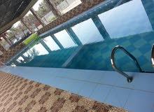 تركيب فلاتر احواض السباحه مع اكسسواراتها والنوافير