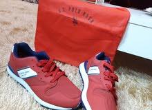 حذاء polo جديد