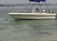 قارب نزهة وصيد