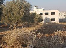 ارض للبيع  دبات ابو النصر