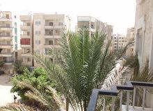 للبيع , سعر ممتاز شقة مسجلة في شاطئ النخيل بجوار الخدمات والرئيسي