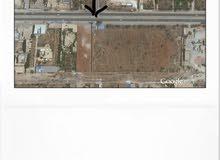 نصف هكتار تجاري للبيع  على الرئيسي طريق المطار مباشرة