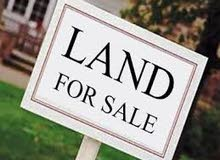 For sale land in Ras Al Khor Industrial 2 on the road consisting of two pieces with an area of 57657