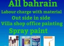 House villas and office paint with experience painter
