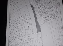 ارض للبيع 5 دونمات في المقابلين شارع القدس