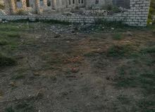 ارض للبيع بابوبلح بجوار مساكن الجيش الجديده وخلف مخزن شركة التمساح