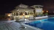 سكن مشترك بمنطقة ابوهيل شامل جميع الخدمات والمسبح والجاكوزي