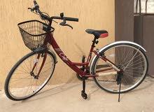 دراجه هوائية طرقات للبيع في مصراته