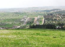 ارض للبيع في شفابدران حوض الشكاره منطقة زينات الربوع