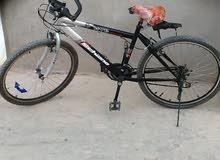 دراجه26 أموره تمام