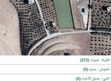 ارض في بيرين حي صاروت للبيع 8 دونم