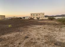 ارض سكنية للبيع  مساحة 4300 قدم - فى منطقة مصفوت حوض 3 - بعجمان kbh 44