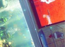 حوض اسماك للزينه كبير