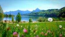 ارض في وادي الربيع باشيك