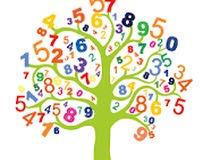 تعليم الرياضيات في جاوا  وما حولها