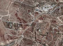 ارض 5دونم في بدر الجديده ( حي الاميرات ) منطقة فلل وقصور واصل جميع الخدمات
