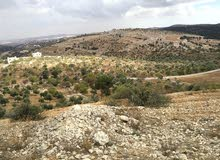 ارض 2321م للبيع في صخرة