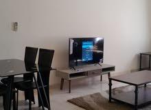 Fully Furnished 1 B/R apartment شقة واسعة مفروشة بالكامل