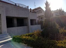 More rooms 4 bathrooms Villa for sale in AmmanAbdoun