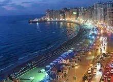 أجمل شواطىء اسكندرية