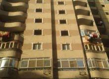 شقه علي شارع جمال عبدالناصر الرئيس
