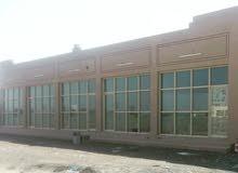 محلات و مكاتب  للايجار في الشارقة