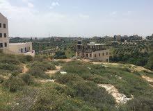 500 م2 سكن في بدر الجديدة