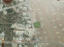 تملك ارض العمر مساحة 750 م في شفا بدران بالقرب من اسكان امانة عمان موقع مميز