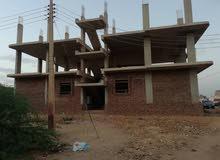 عمارة فى حي النصر مربع 26 شرق النيل