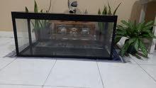 Fish Tank 100cm Brand New (Big Aquarium)