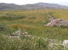 قطعة ارض 2700م للبيع في الكرك - عي
