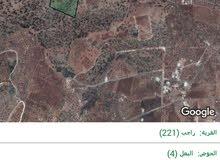 قطعة ارض مساحتها 40 دونم للبيع في بلدة راجب.