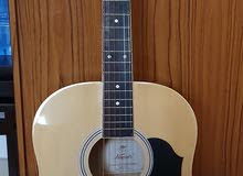 Brand New Guitar for sale