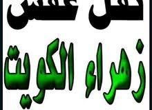 نقل اثاث اغراض أبو علي