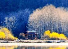 مبنى على الرئيسي في طريق النهر مساحته 2500