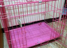 بيت كلب معدني