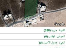 ارض 3 دنم  مشترك مع 10 دنم في اجمل واعلى مناطق جريبا شارع 30 متر وشارعين 10 متر....