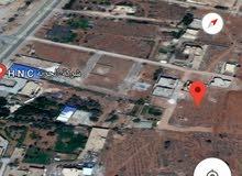 طريق الهواري مقابل مديرية الأمن بنغازي خلف شركة الحرية الحدائق